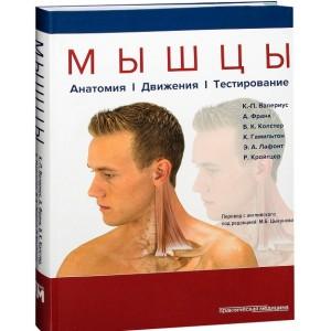 Книга. Мышцы. Анатомия. Движения. Тестирование. Клаус-Петер Валериус