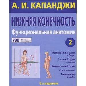 Книга. Нижняя конечность. Функциональная анатомия. Адальберт Капанджи
