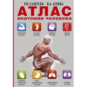 Книга. Атлас анатомии человека. Самусев Р.П. Агеева В.А.